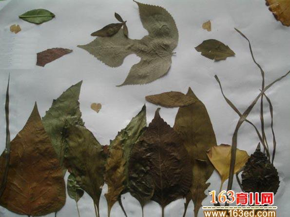 树叶粘贴画作品:漂亮的风景画